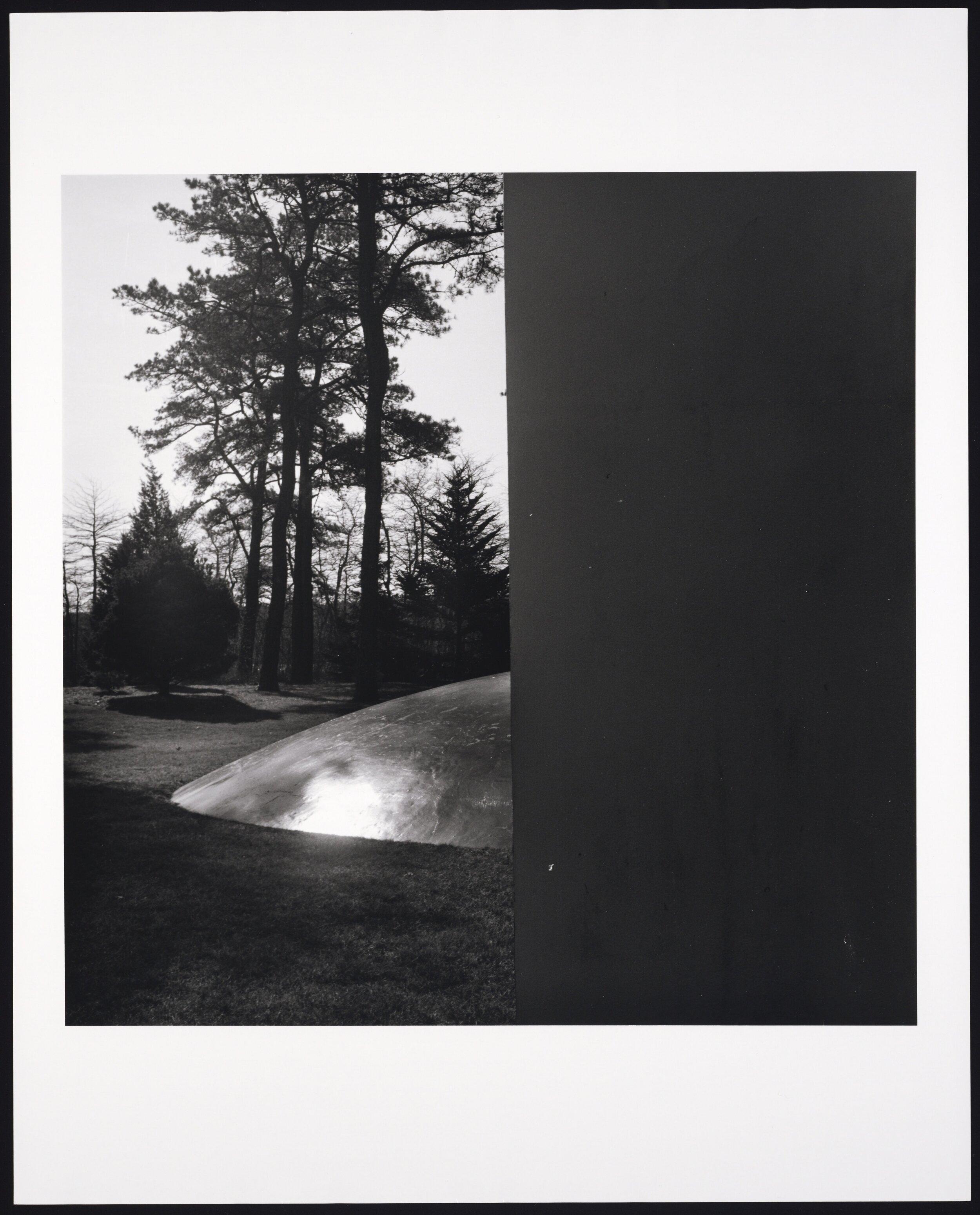 The Creeks 4.jpg