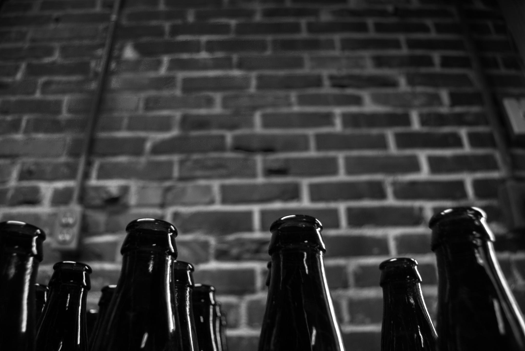 Mint & Mustard-Brewery-3.jpg