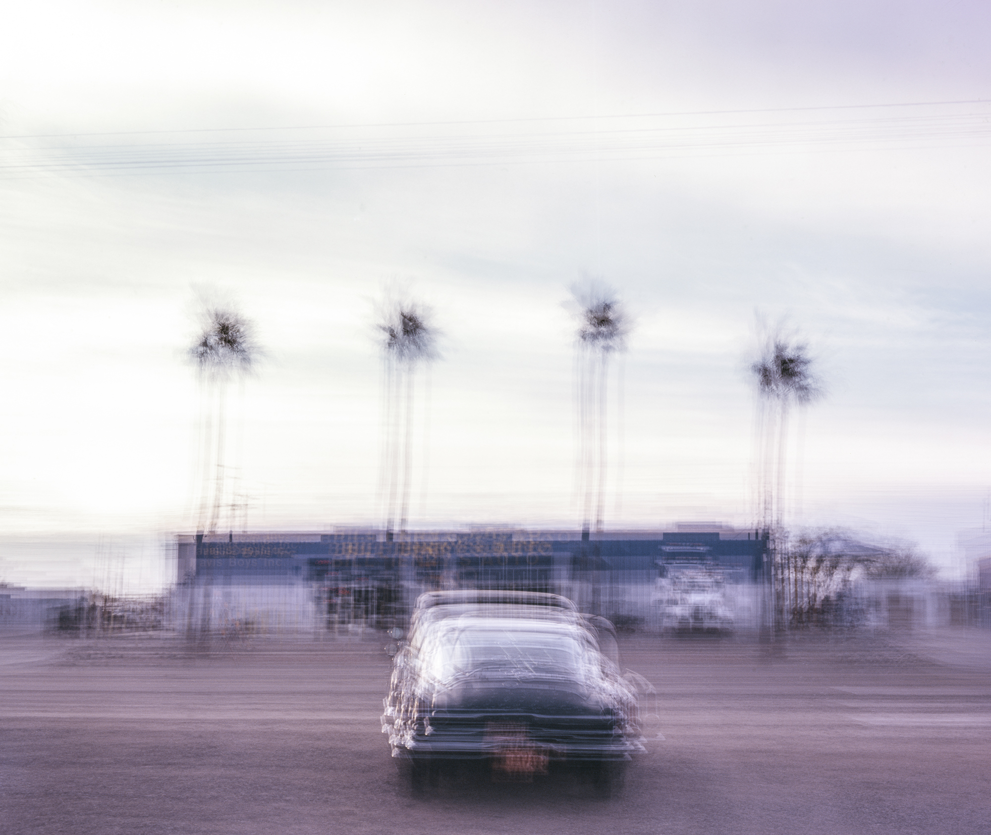 1965 Barracuda with four palm trees