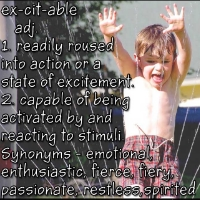 Excitable - definition