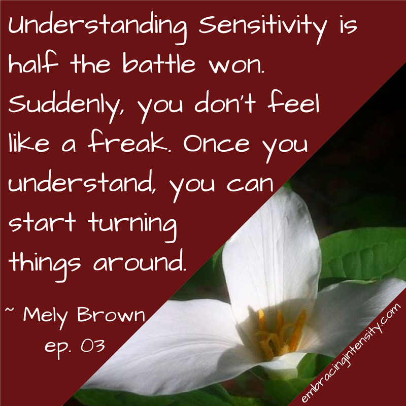 Embracing Intensity Understanding Sensitivity is half the battle won. Suddenly, you don't feel like a freak. Once you understand, you can start turning things around. ~ Embracing Intensity Podcast ep. 03: Self-Care for the Highly Sensitive Woman with Mely Brown