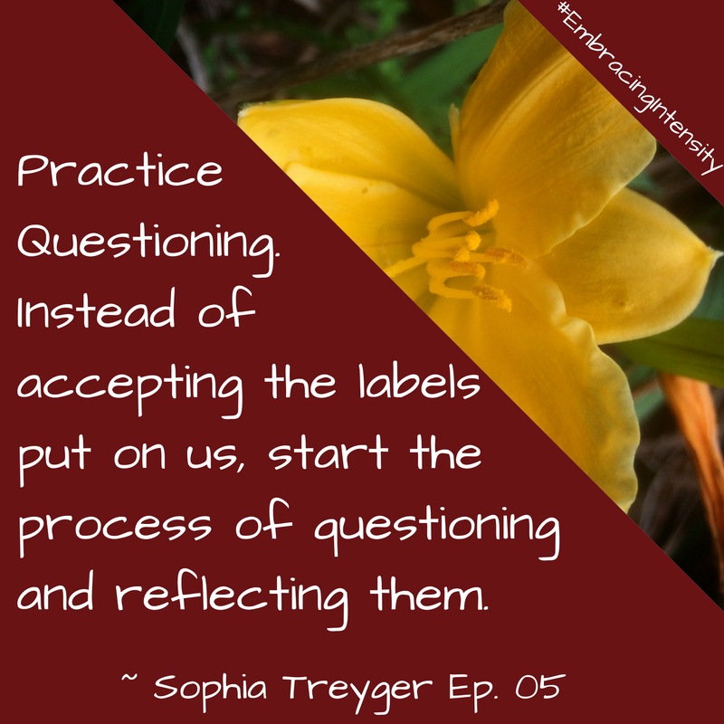 Practice questioning instead of accepting the labels put on us, start the process of questioning and reflecting on them. ~ Embracing Intensity Podcast ep. 05: The Intersection of Intensity and Intimacy with Sophia Treyger