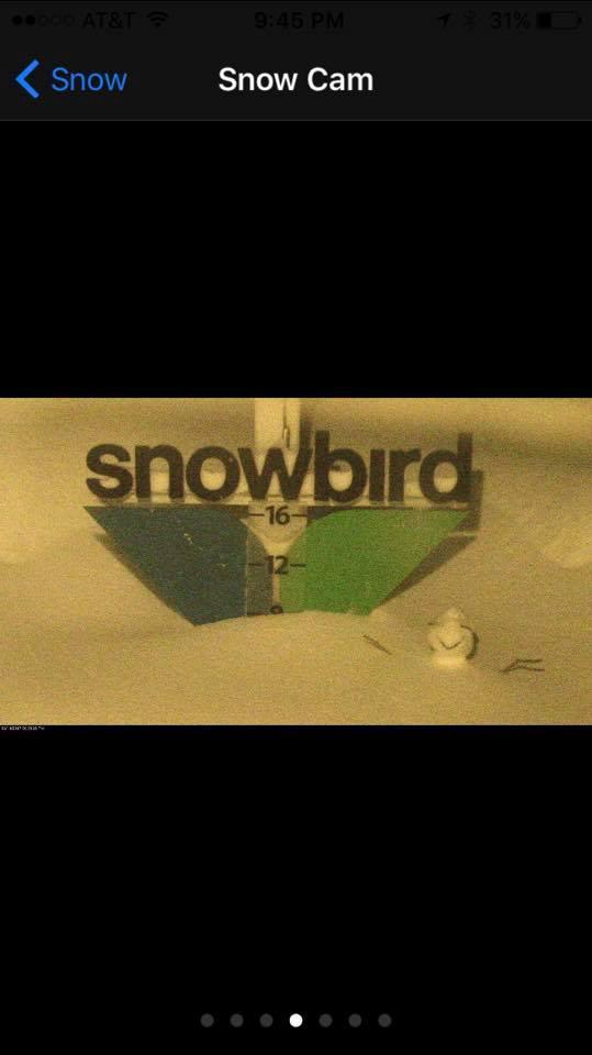 snowbird snowman.jpg