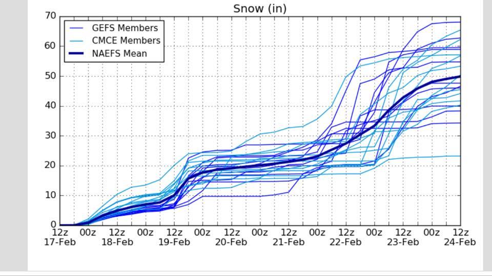feb 25 snow.jpg