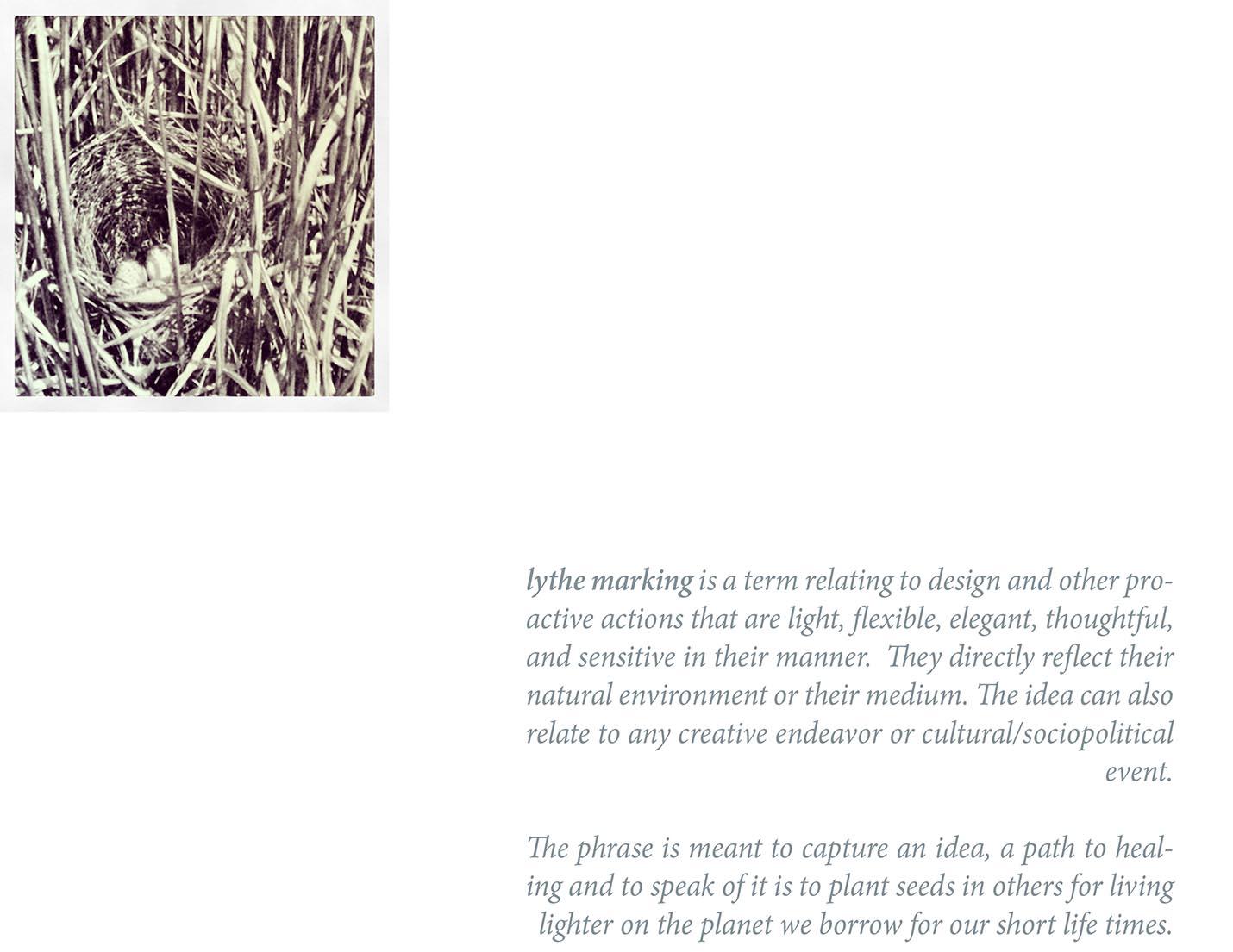 lythe marking copy-5.jpg