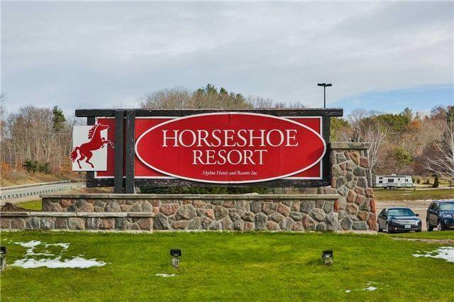 horseshoeresort copy.jpg