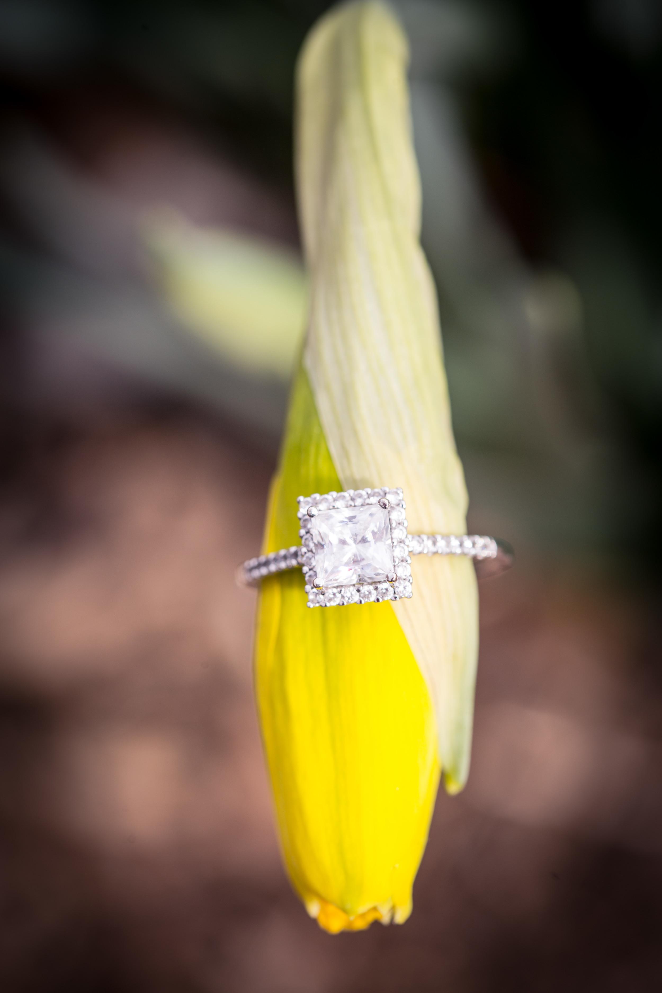 Engagement-119.jpg