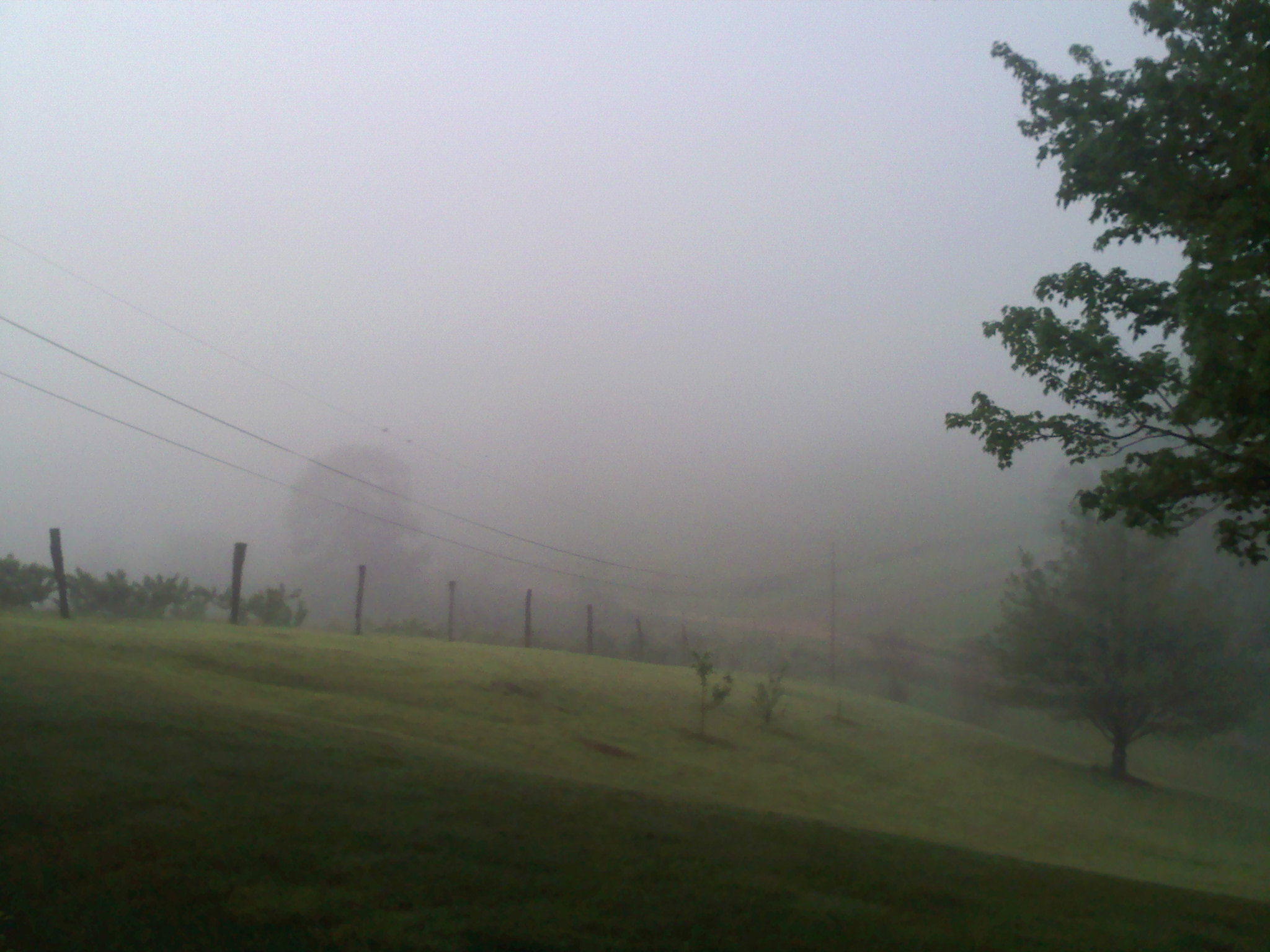 """Environmental imagery plays a huge part in setting the tone for scenes. This foggy morning view of Wade's Gap, VA, is the inspirational and literal setting for the opening scene of """"The Last Immortal."""""""