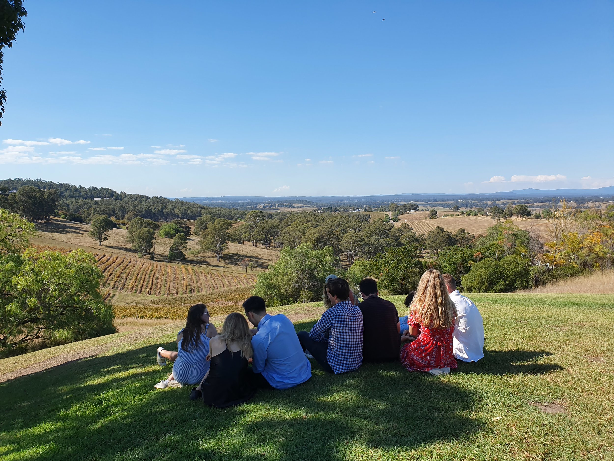 Audrey wilkinsons winery.jpg