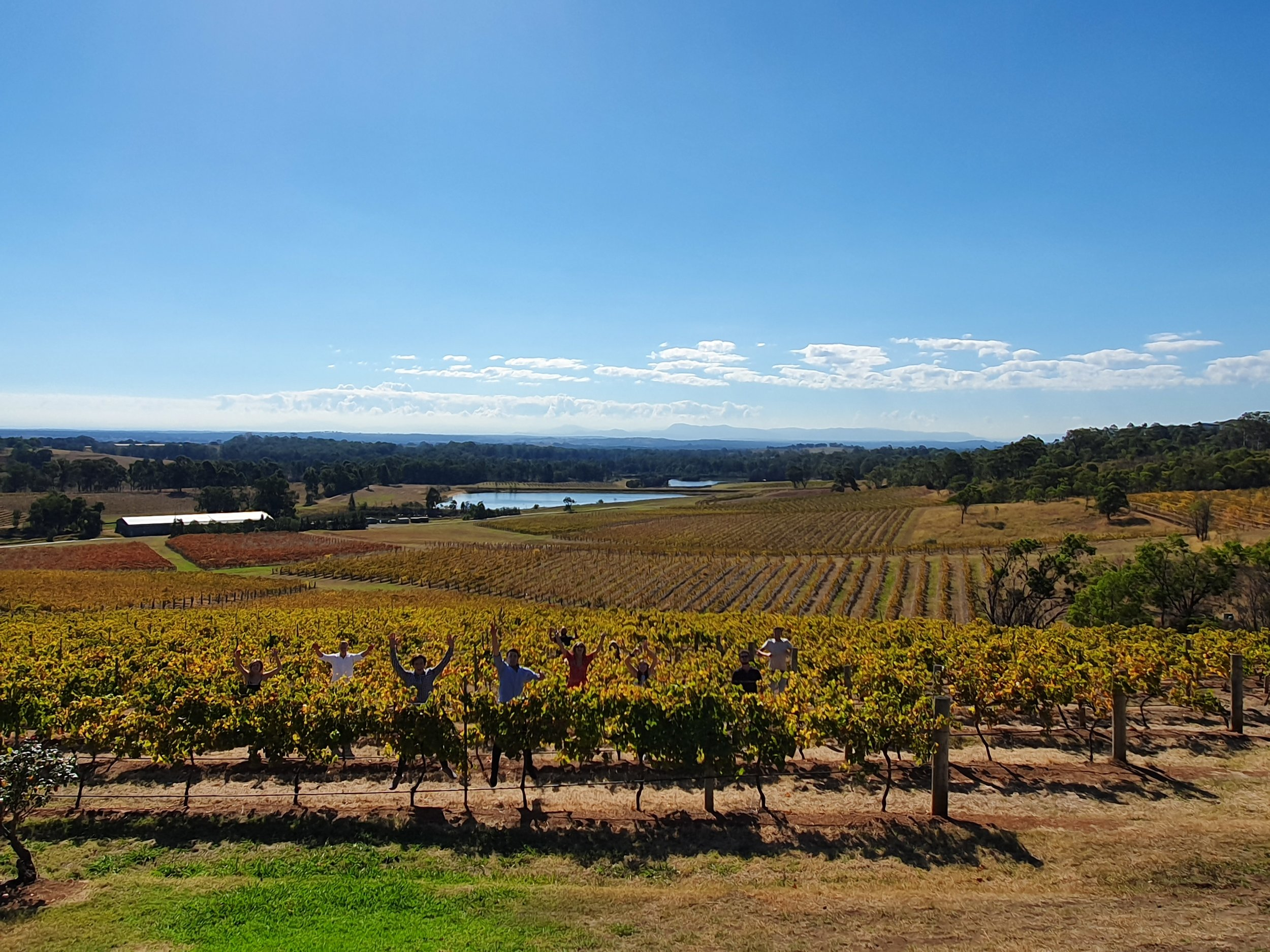 wine tour in the hunter valley.jpg