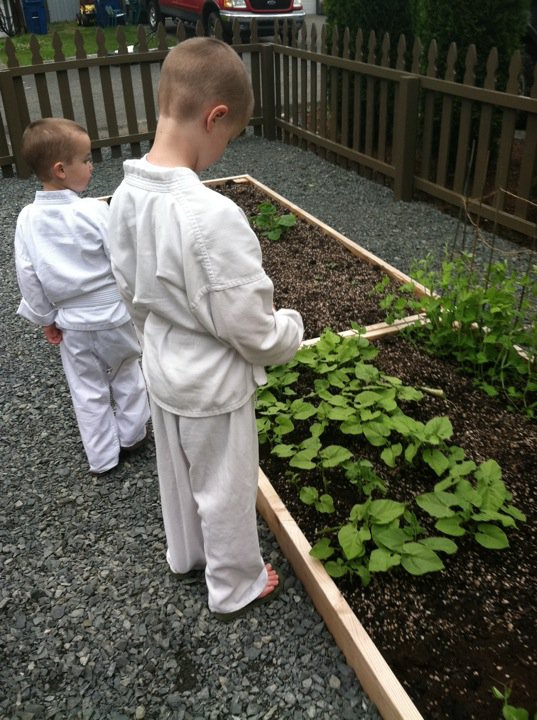 parsnipsandpaisley/givingupgrass/planting