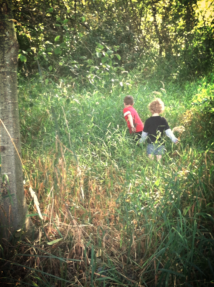 Playing in the greenbelt next to our house.