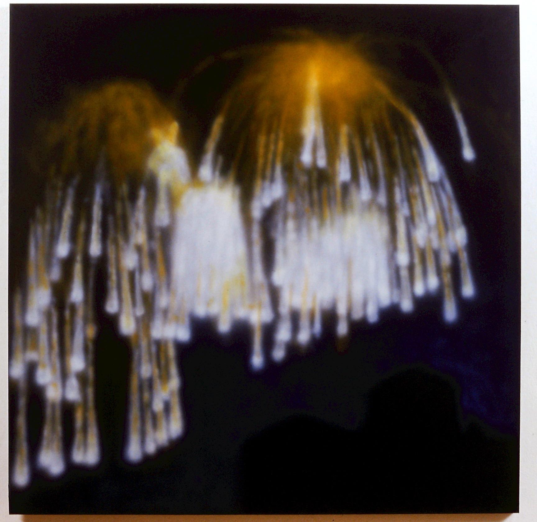 fireworksone.jpg