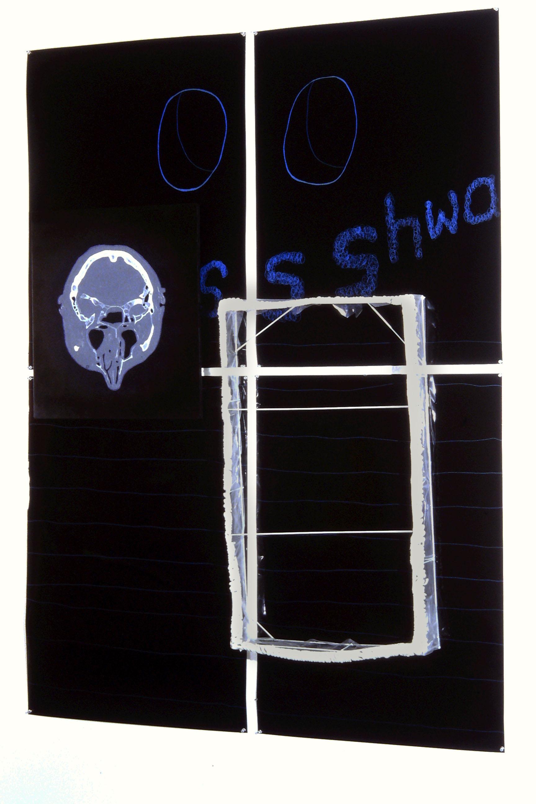 Peter_Alwast_insideout_2001.jpg