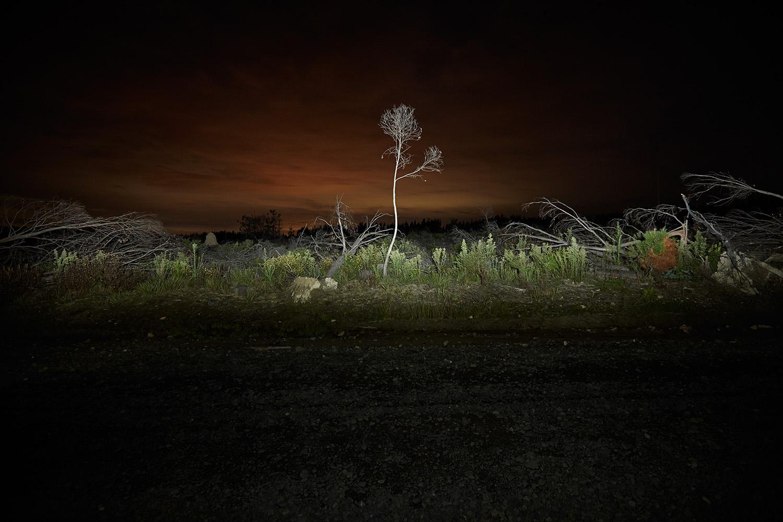 11_As_Night_Falls.jpg