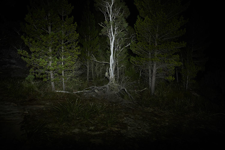 13_As_Night_Falls.jpg