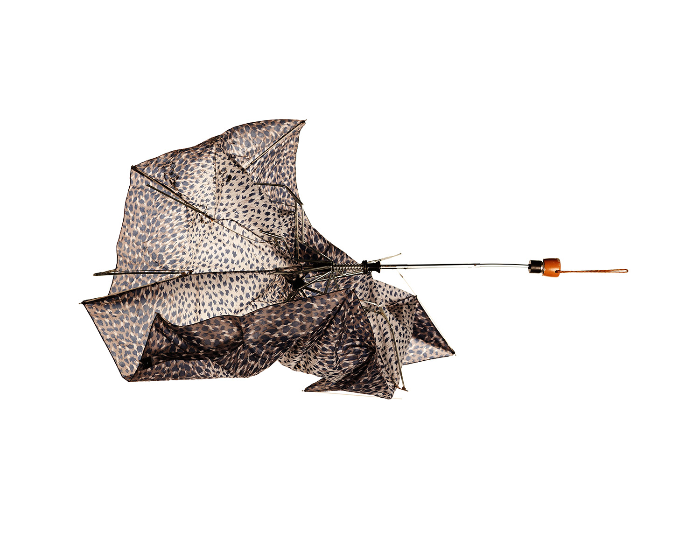 10_Umbrellageddon.jpg
