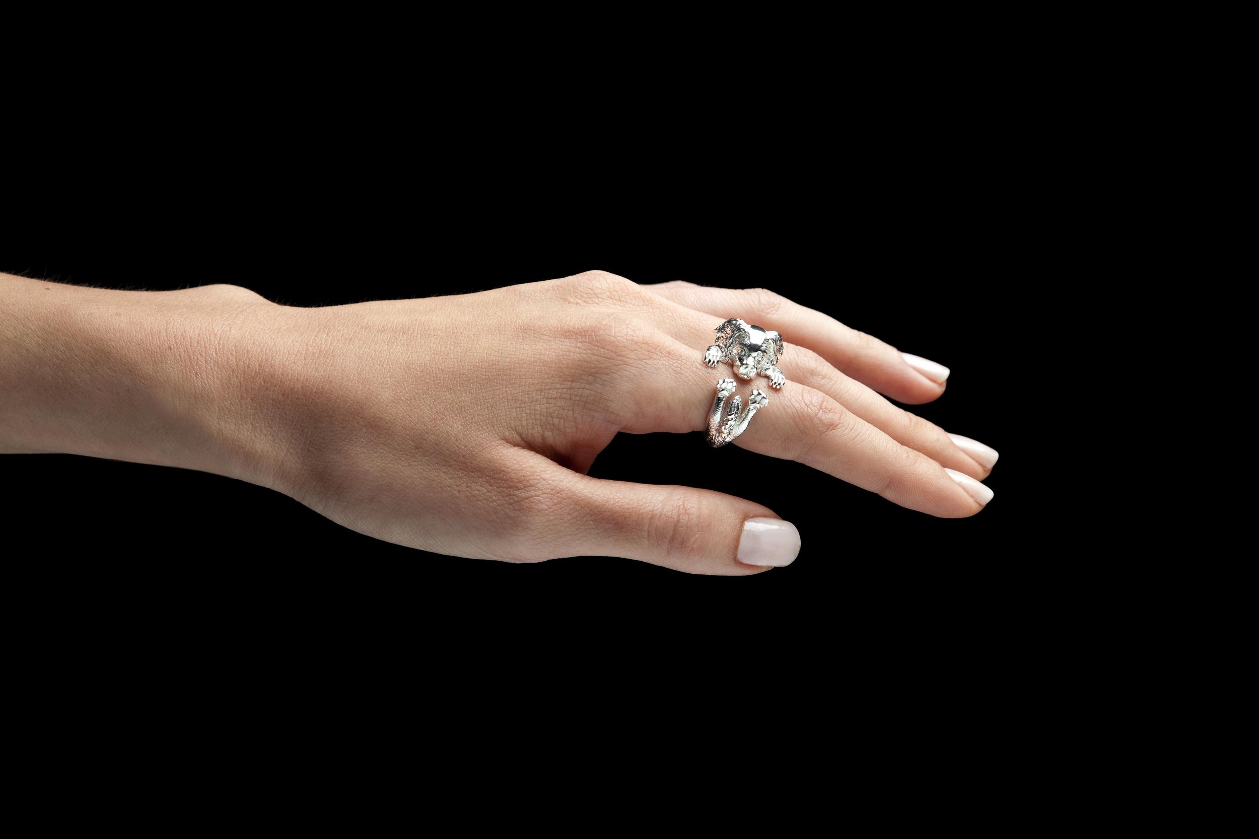 Dog Fever | Jewelers Camarillo | Van Gundys
