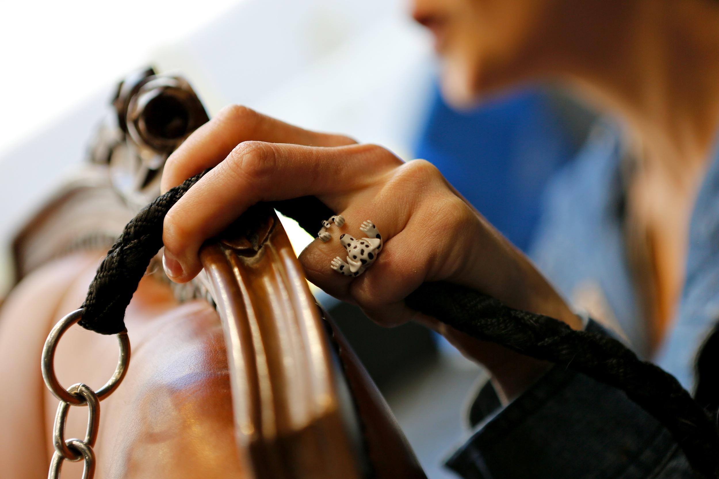 Dog Fever Ring | Ventura CA | Van Gundy Jewelers