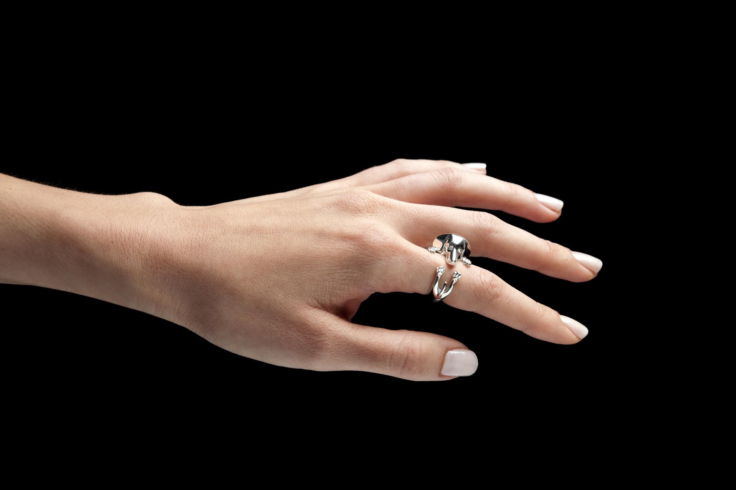 Dog Fever | Jewelers Ventura | Van Gundys