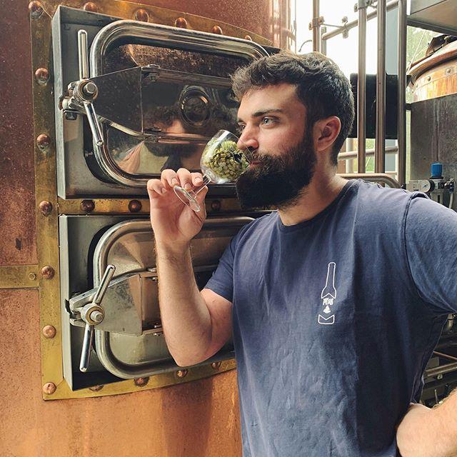 Il y a 2 ans, nous brassions pour la première fois  529 brassins plus tard, nous sommes toujours là ! 🍻🎂  Merci à toute l'équipe @peakbeer ❤️ Merci à vous tous ❤️  #belgiumpeakbeer #peakbeer #peak #beer #belgianbeers #belgium #brewing #brewer #brewbeers #craftbeers #belgianbrewers #hop #bière #bièrebelge #belgique #brasserie #brasseursbelges #bièresartisanales #blonde #brune #triple #myrtille #blond #double #produitslocaux #highfens #hautesfagnes
