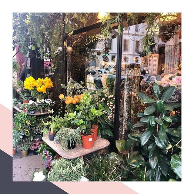 Pit stopping at a beautiful Florist in Le Marais. Read our travel tips for Paris on our Travels section #EddieHarropTravelista