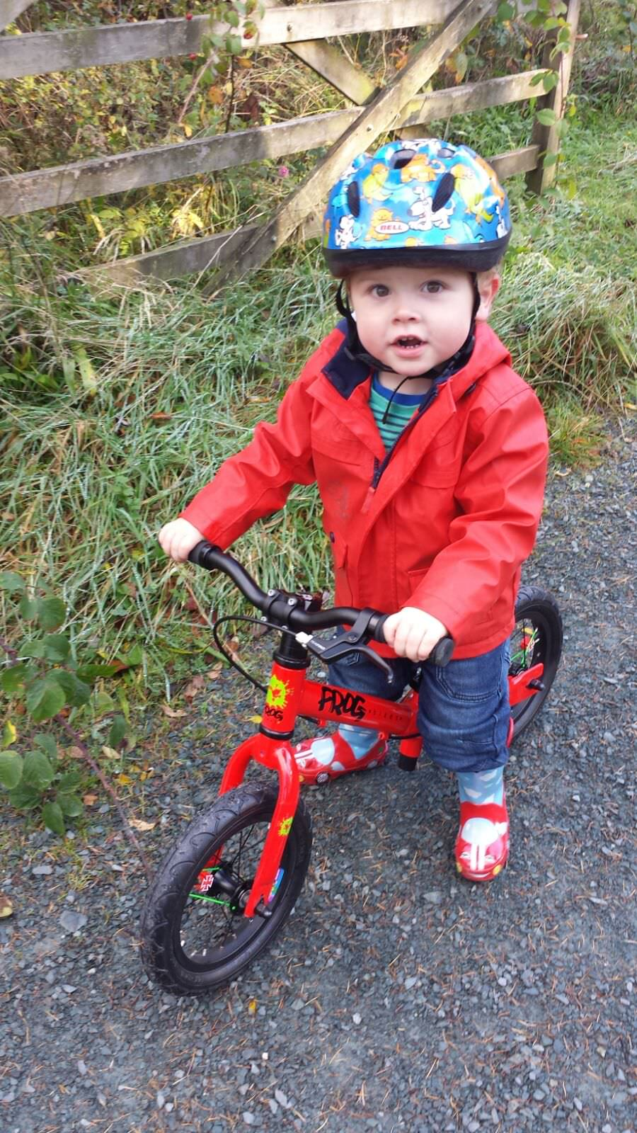 Frog Bikes Kids.jpg