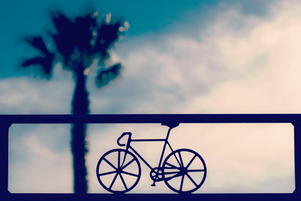 sign_bicycle_bike_palm_tree_sky-89700.jpg!d.jpg