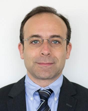 Prof. Pedro Camanho -University of Porto
