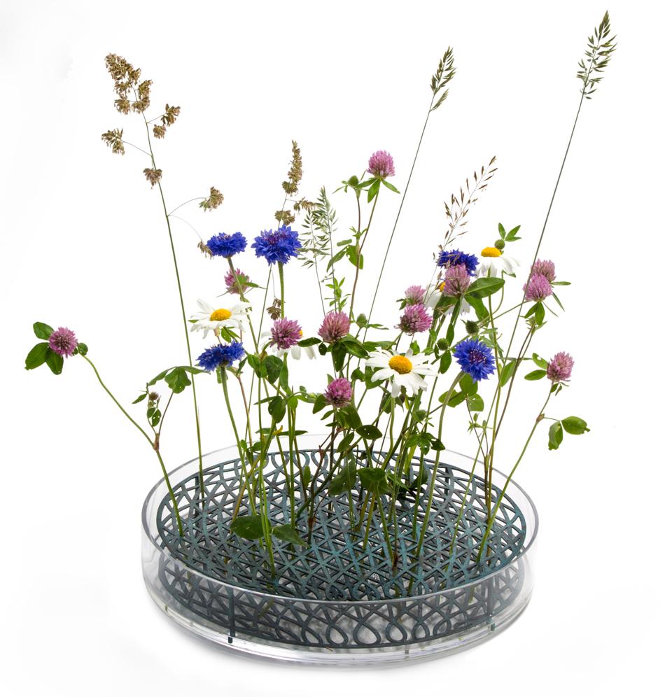 ANG.mega_.blommor.jpg