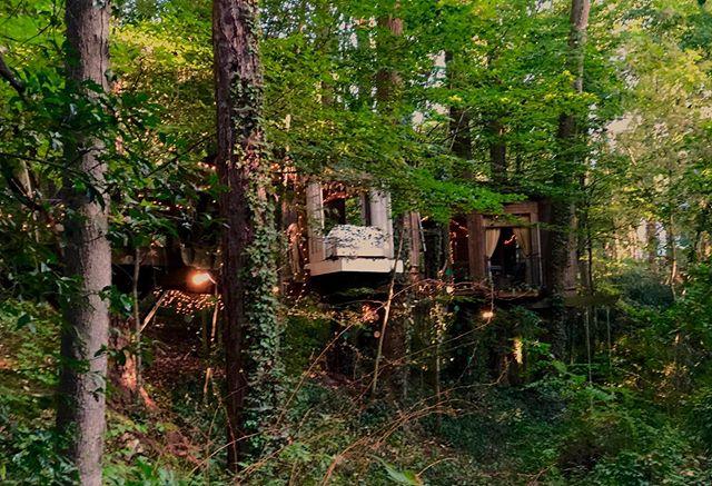 #treehouseatl #treehouses #treehouseliving #treehouse #tinyhome #tinyhouses #treehousegeorgia