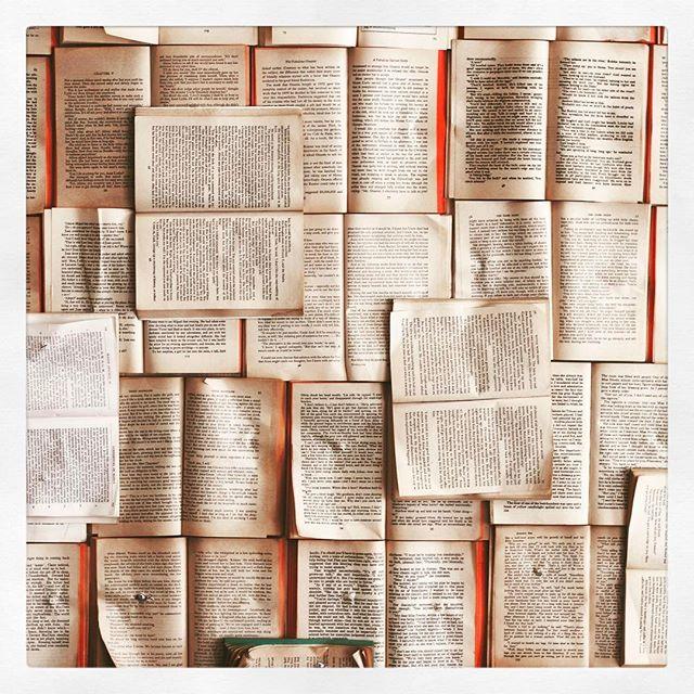 #readingisfun #onedollarbook #onedollarbookproject #sooomanyoptions #makechildrenbetterindividuals