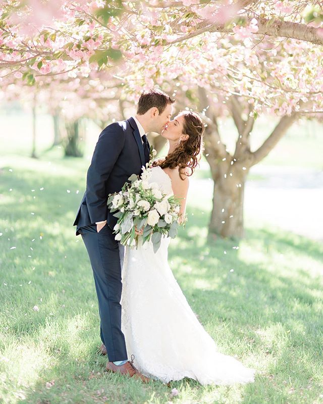 Okay so first of all, is this photo not STUNNING!? @oliviaraecraft managed to capture the essence of spring all in one photo and it is glorious 🌸🌸🌸 I know, I know, it's summer, not spring. Eventually, I'll get around to posting more photos from Jim and Alyssa's wedding but until then, bask in this cherry blossom goodness 😍 Also, I wanted to post on here so you all know I'm still alive and well so...hey 🙋🏻‍♀️ I'm always struggling to keep up on here and then I have this internal battle with myself on whether that's a good or bad thing 🤔