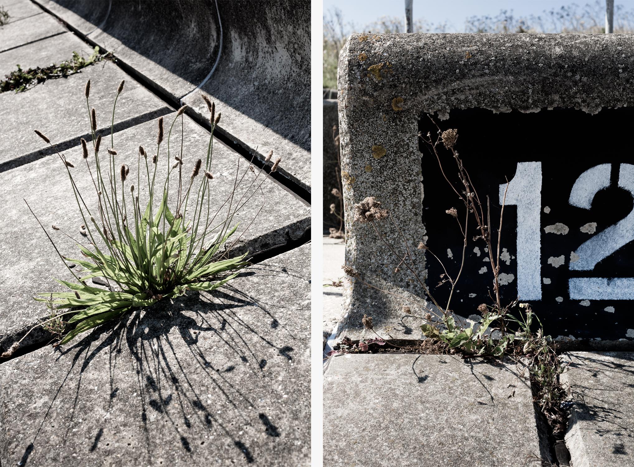 concrete par1.jpg
