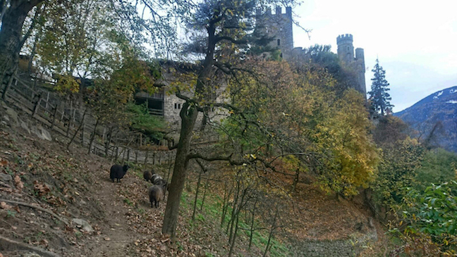 Walking the grounds of Brunnenburg Castle, now privately owned and used as an agricultural museum and philosophy school.