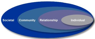 * The overlapping rings in this pictured model illustrate how factors at one level influence factors at another level.