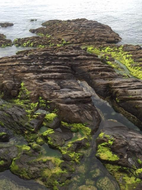 Coastal beauty