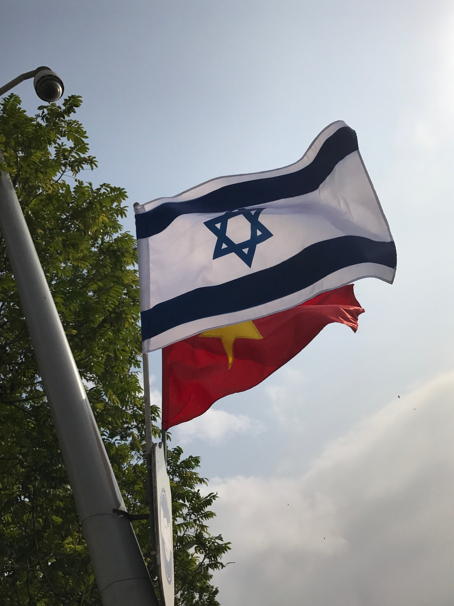 Friendship flags Israel and Vietnam