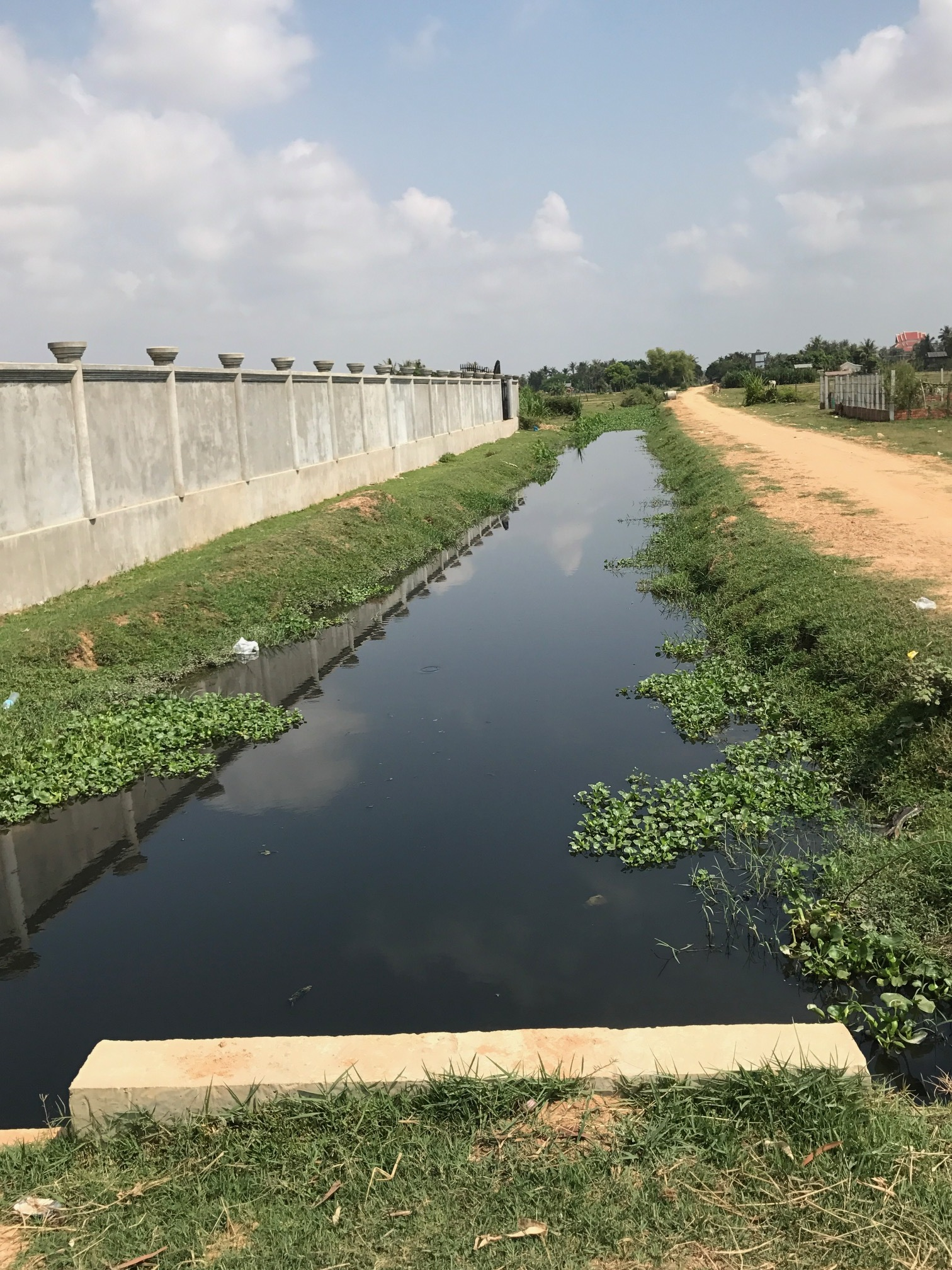 Canal for rice fields