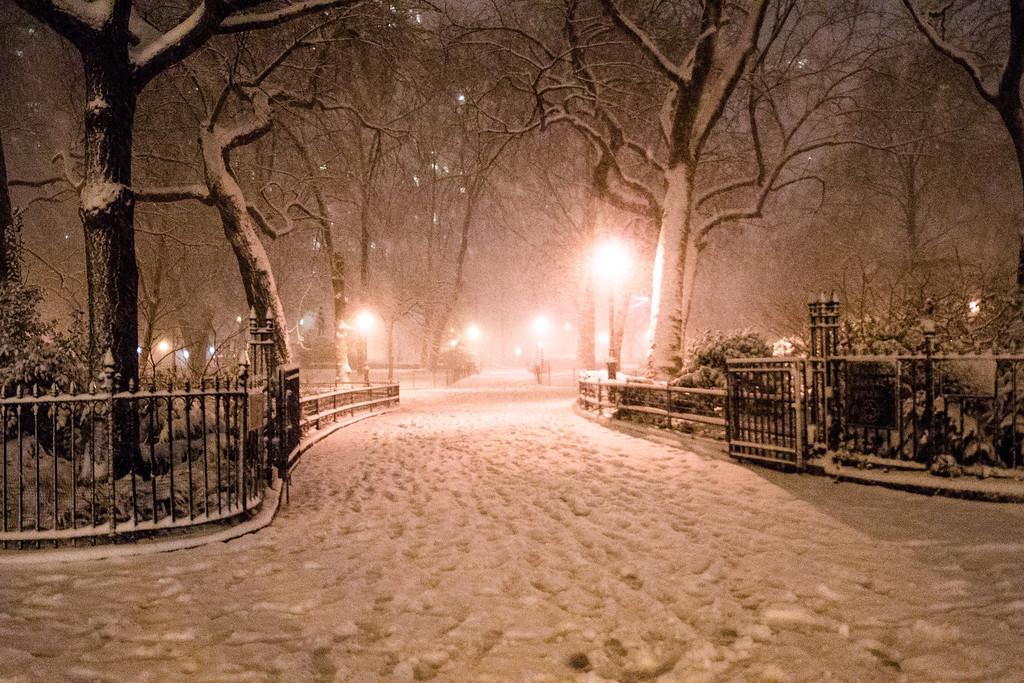New York Winter Night - Madison Square Park in the Snow-XL.jpg