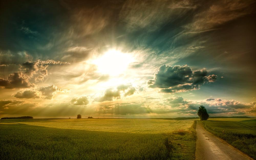 powerful-sunlight.jpg