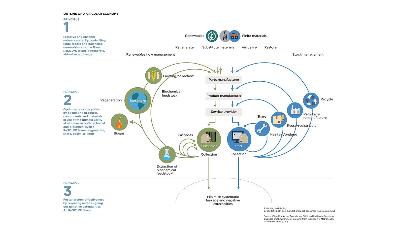 Circular Economy System Diagram  by The Ellen MacArthur Foundation