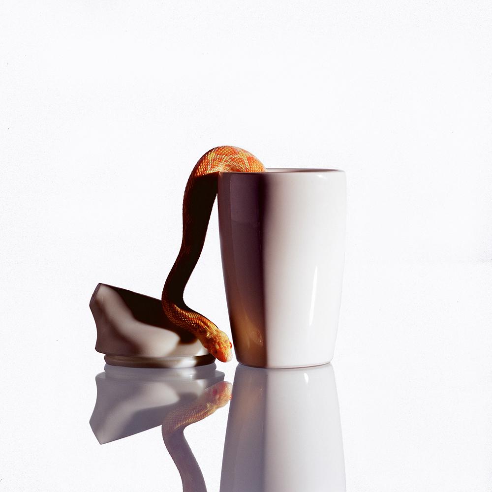 Arabia EGO, design Stefan Lindfors