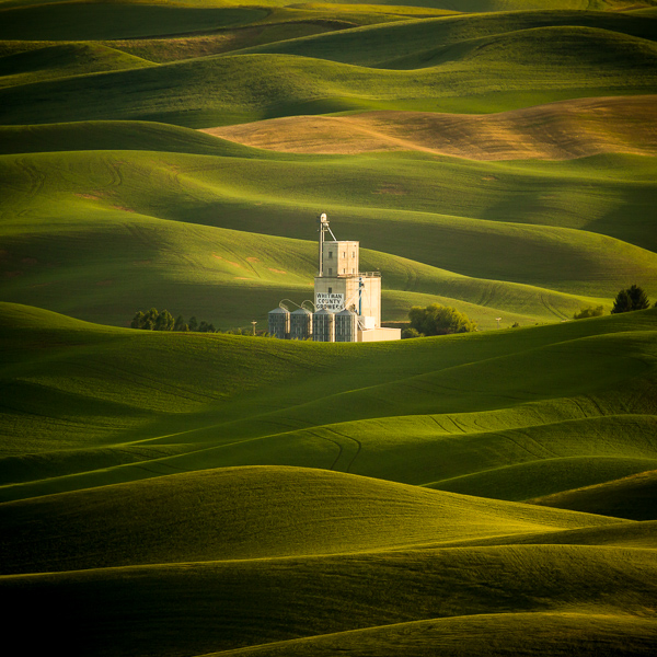 Late day light as seen from Steptoe Butte