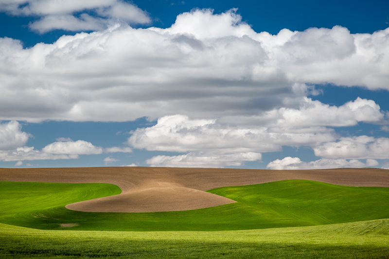 Typical back road scene in Palouse