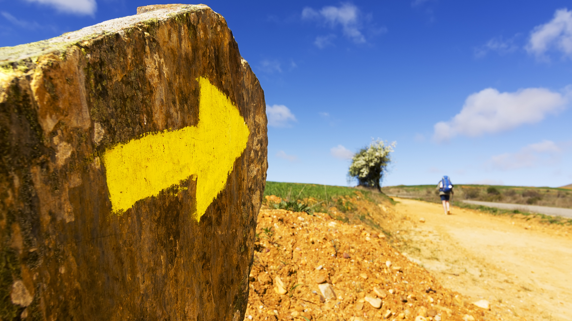 Camino Provisions11.jpg