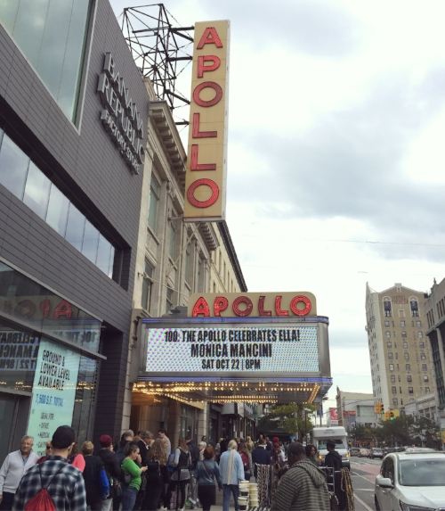 The Apollo Theater : This historic Harlem venue first opened in 1914 as Hurtig & Seamon's New Burlesque Theater, reopening as the Apollo in 1934. It has been a home to rising talent for over 80 years, and is anational landmark.