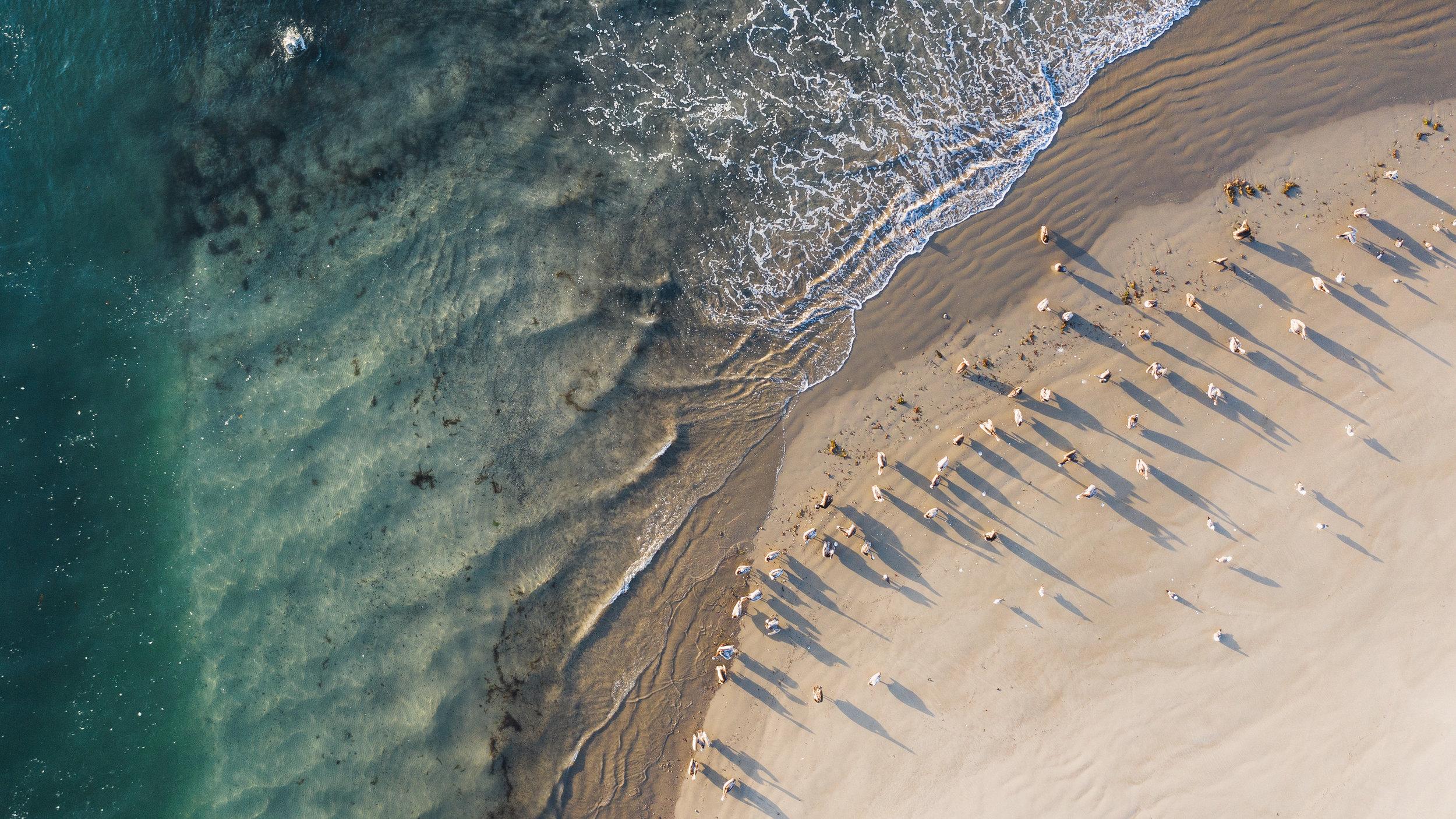 Los-Angeles-Aerial-Drone-Photographer-0660.jpg