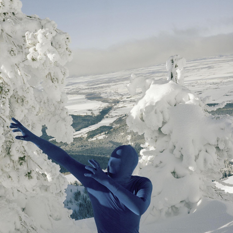 ORCHID.seasons - winter    December 14 - 22, 2018