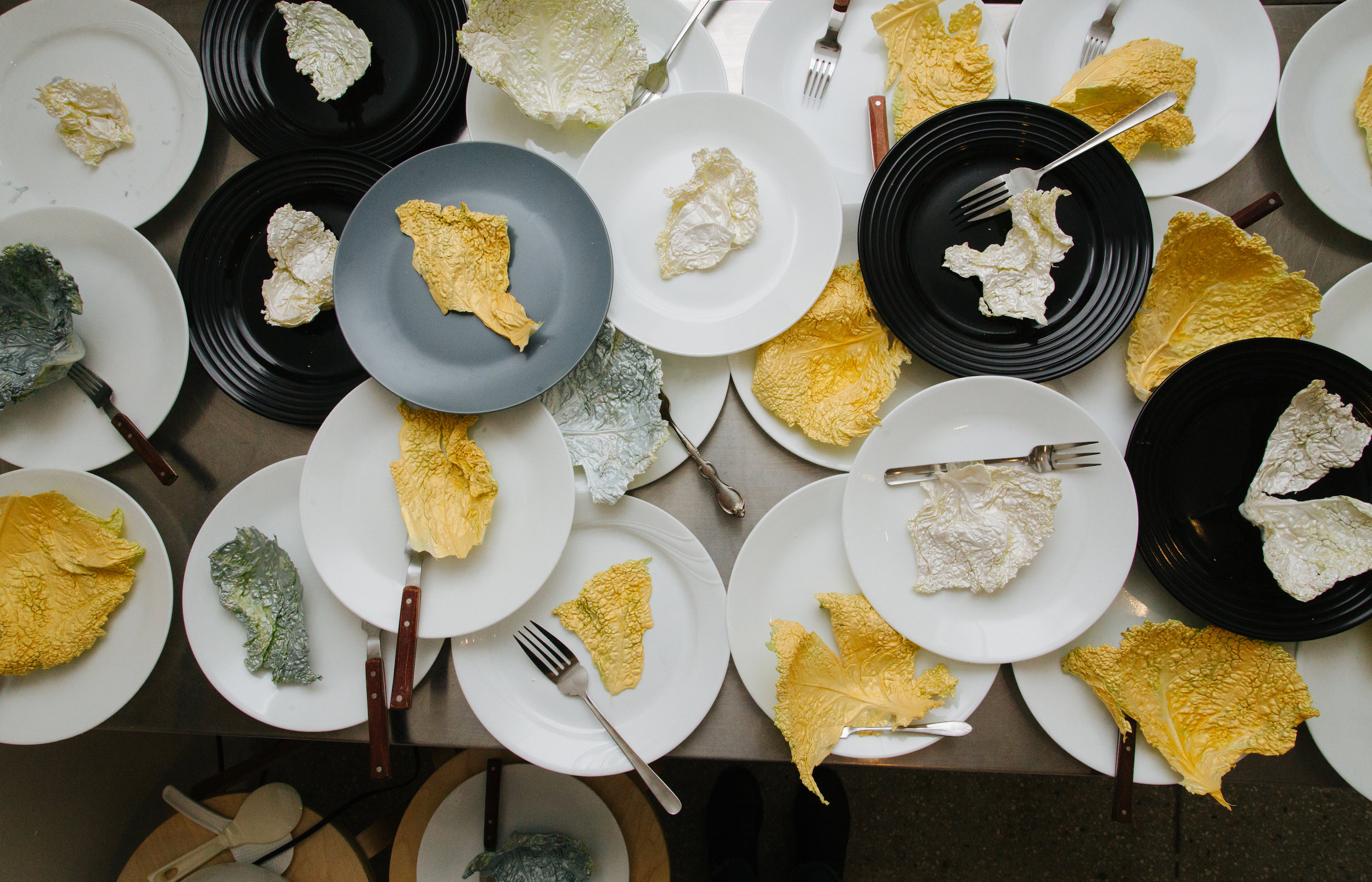 surreality  dinner party  reflections by Allie Wist  February 2, 2019